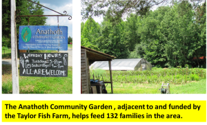 Anathoth Community Garden