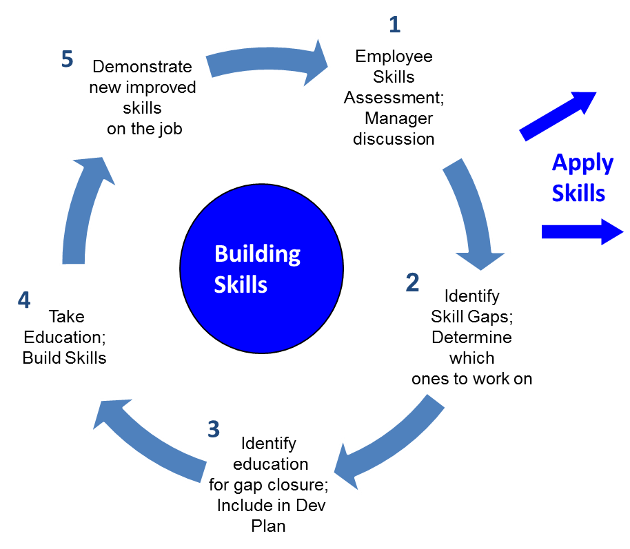 Skills Building Cycle